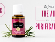 Purification essential oil blend Uses and benefits