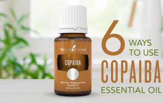 6 ways to use Copaiba essential oil | Young Living essential oils