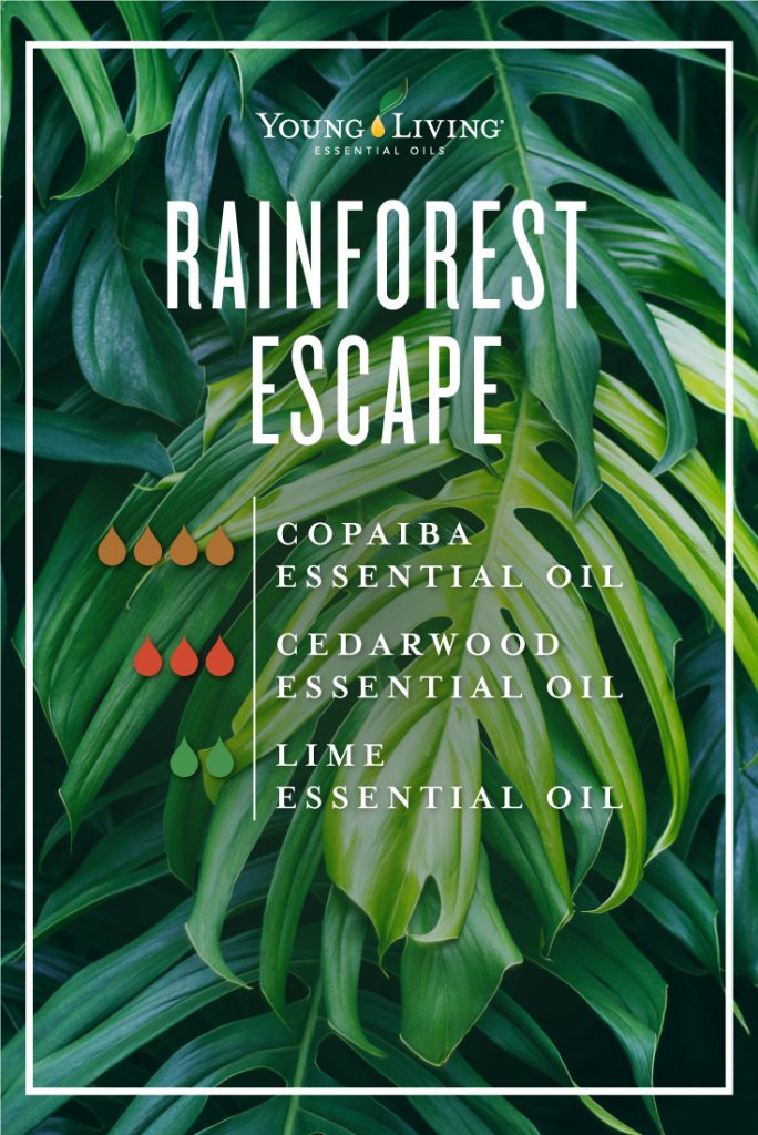 Rainforest escape essential oil diffuser blend | Young Living essential oils