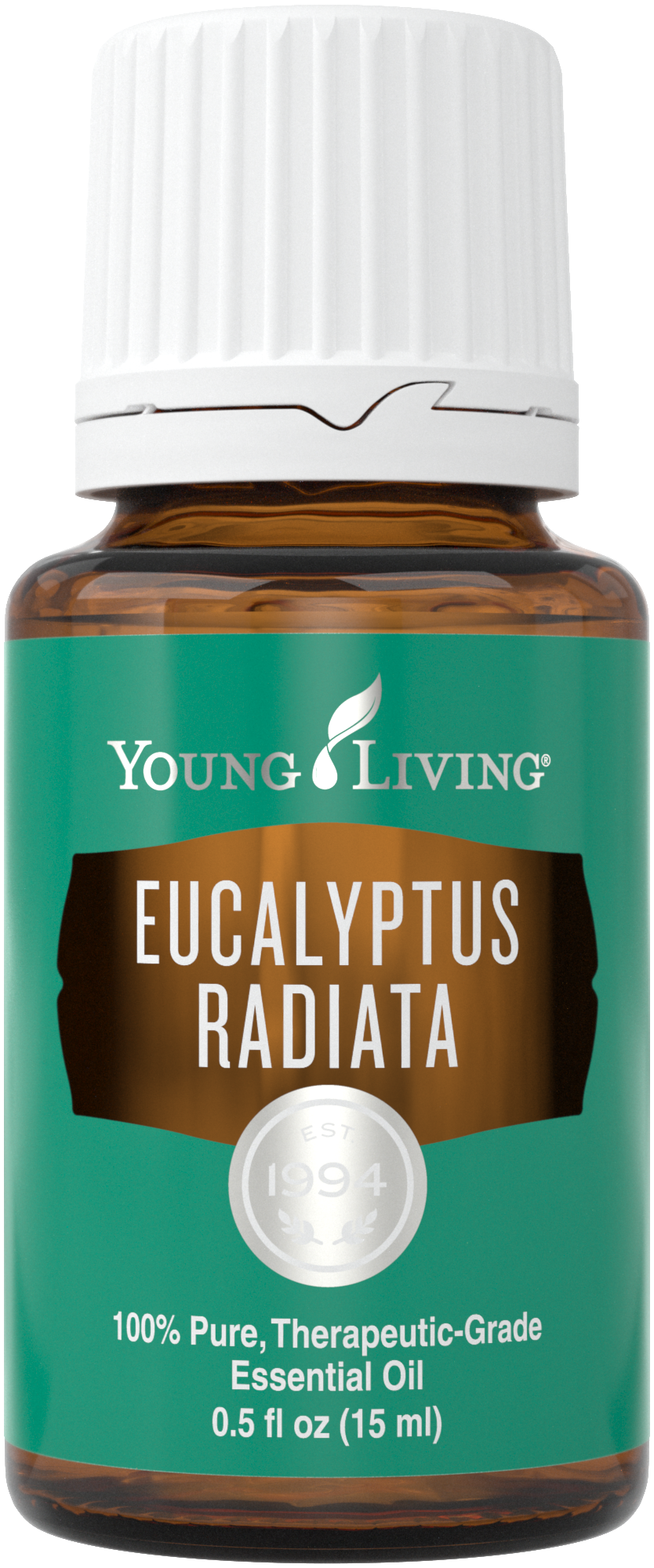 Eucalyptus Radiata essential oil uses | Young Living