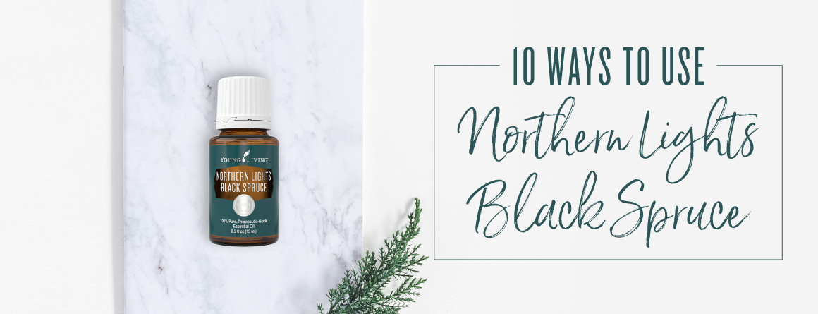 10 ways to use Northern Lights Black Spruce