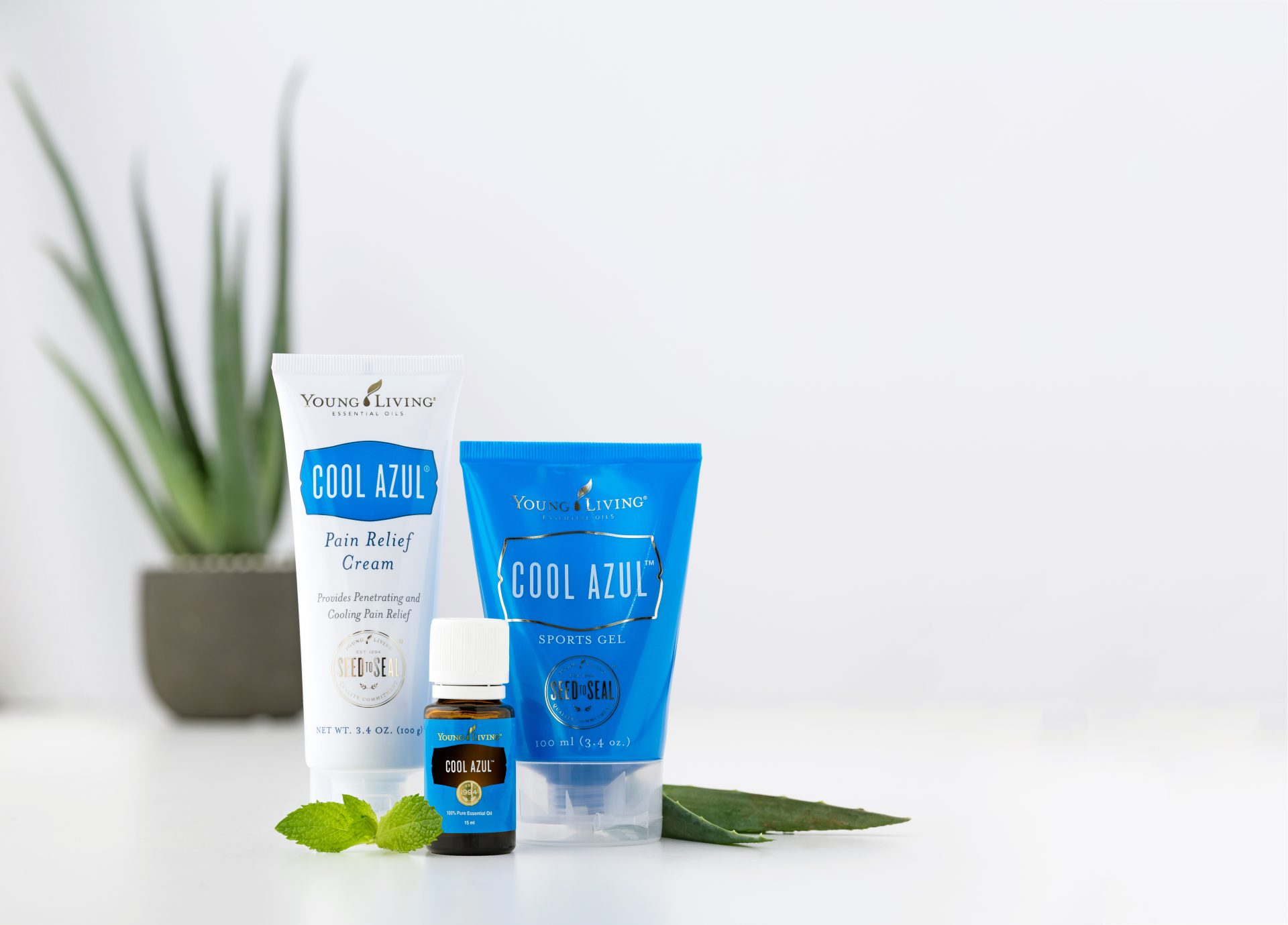 Cool Azul product line