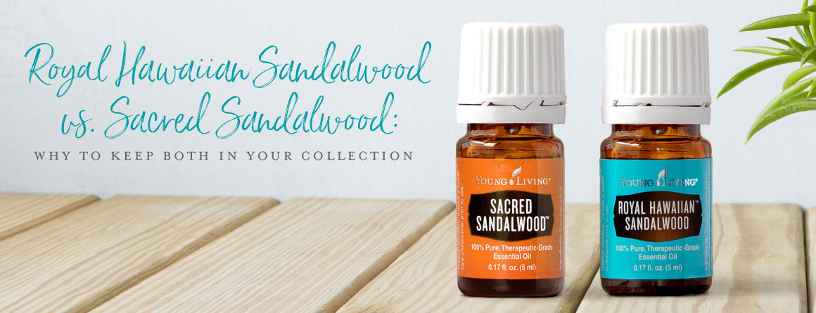 Royal Hawaiian Sandalwood vs Sacred sandalwood: Why to keep both in your collection