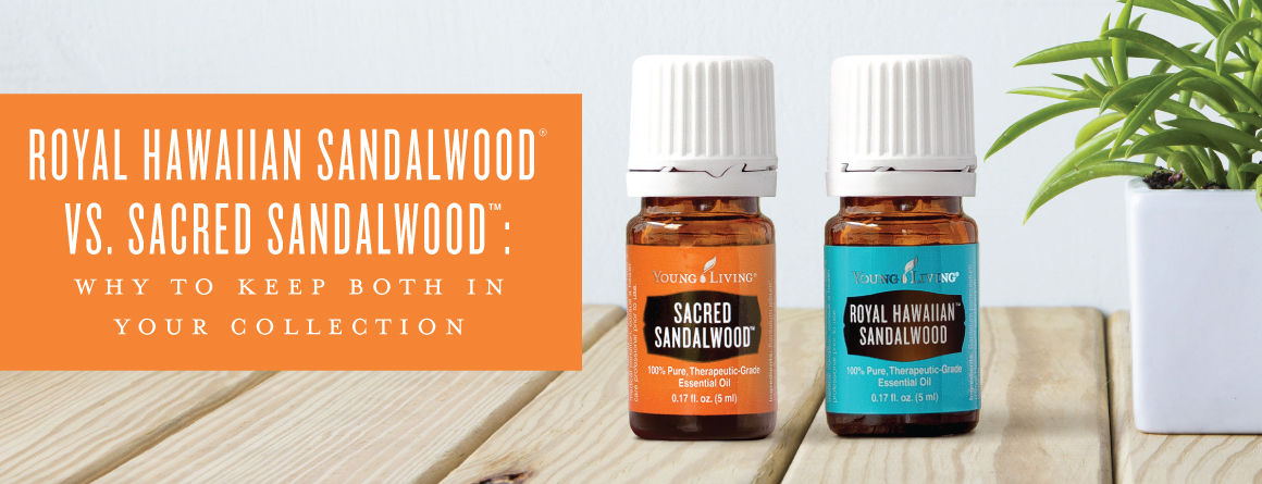 Royal Hawaiian Sandalwood vs. Sacred Sandalwood: Why to keep both in your collection