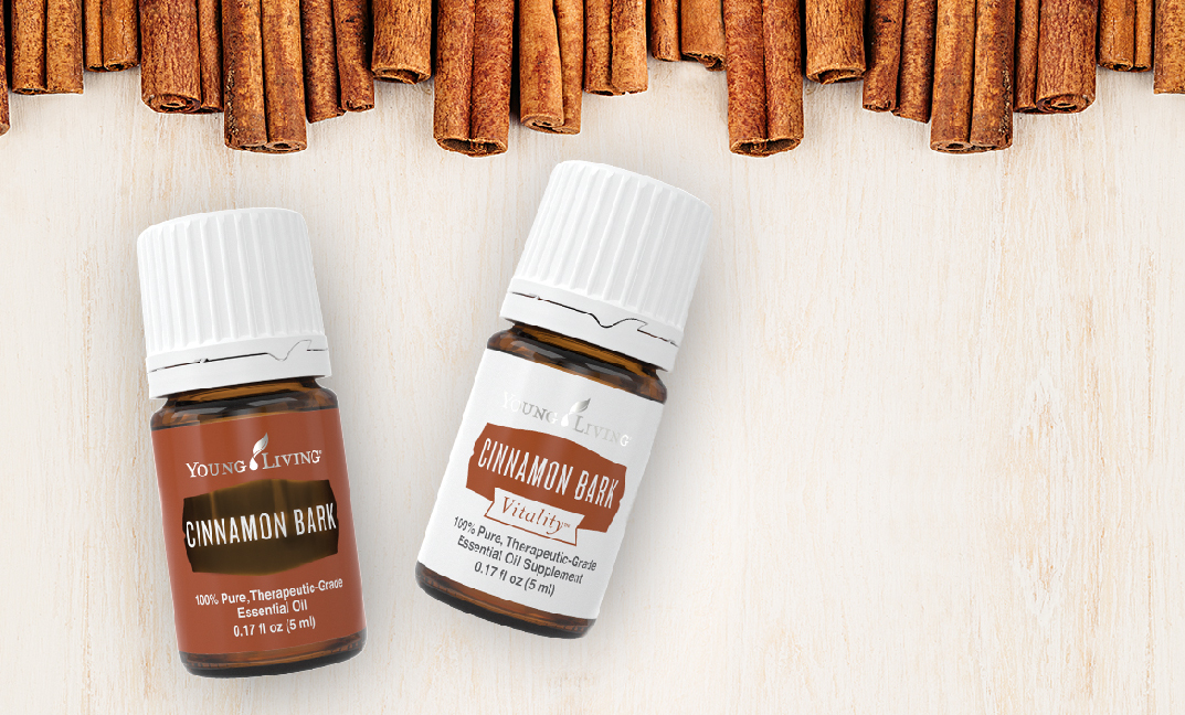 Snuggle up with Cinnamon Bark