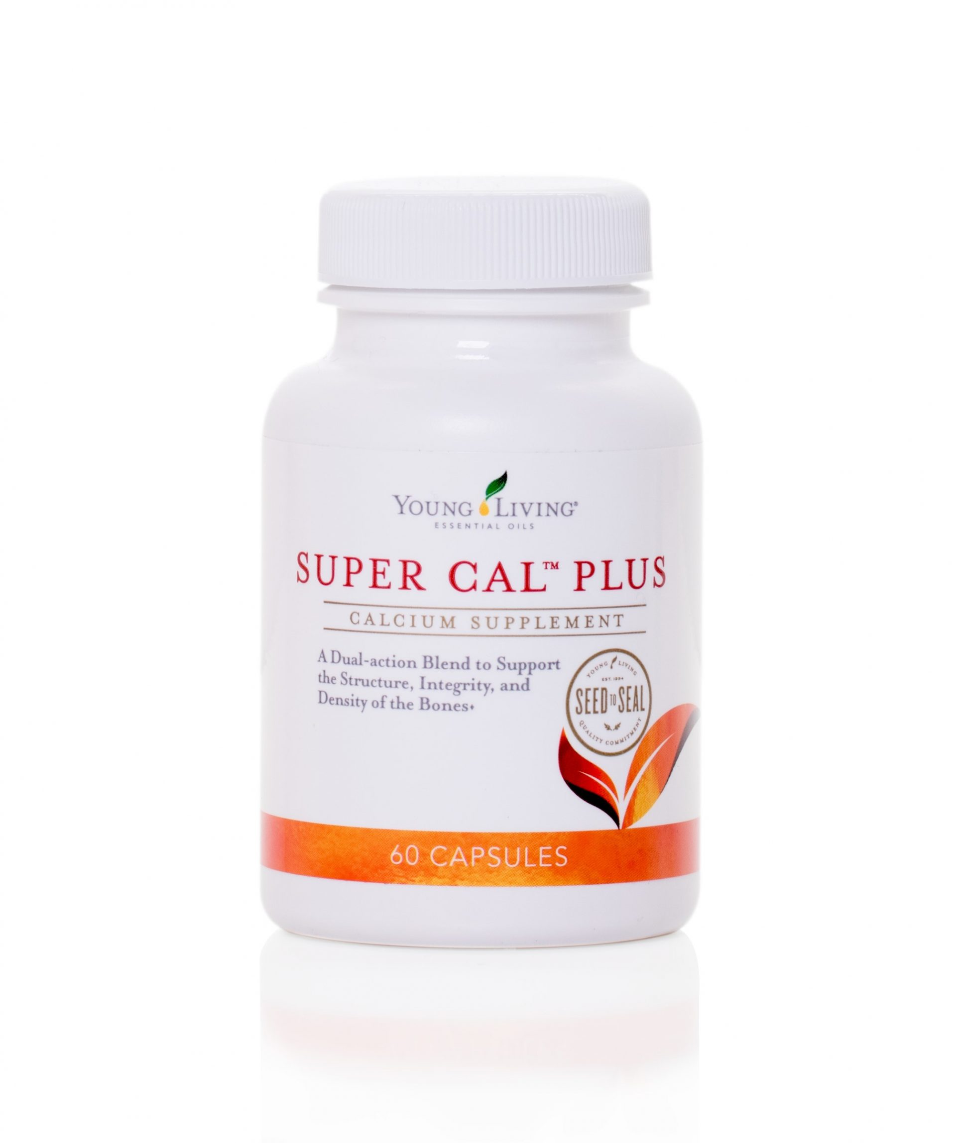 Super Cal Plus