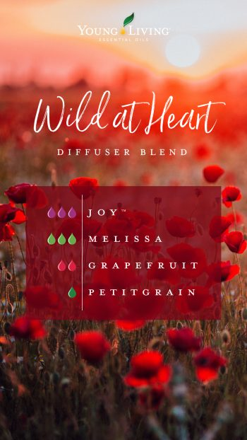 Wild at heart diffuser blend