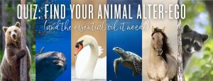 Quiz: Find your animal alter-ego (and the essential oil it needs)
