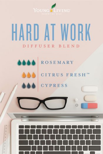 Hard at work diffuser blend