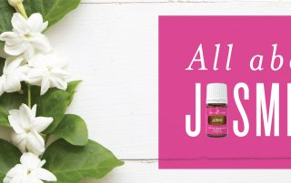 All about Jasmine essential oil