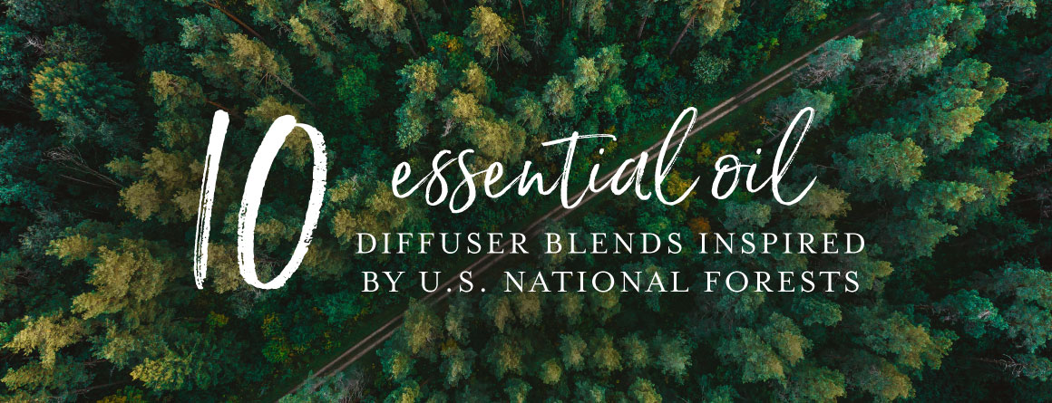10 essential oil diffuser blends inspired by U.S. National Forests