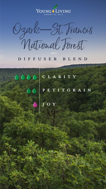 Ozark-St. Francis national forest diffuser blend