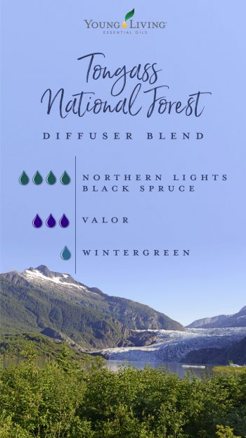 Tongass national forest diffuser blend