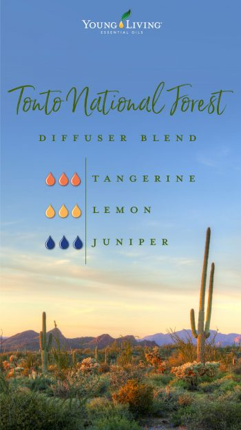Tonto national forest diffuser blend