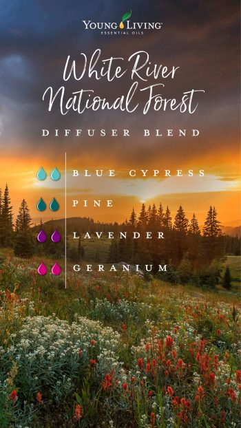 white river national forest diffuser blend