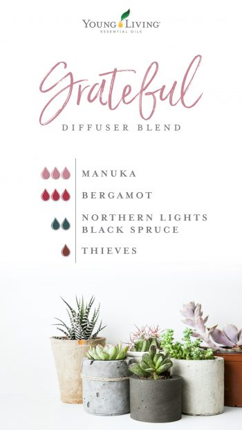 Manuka diffuser blend 3 drops Manuka, 3 drops Bergamot, 2 drops Northern Lights Black Spruce, 1 drop Thieves