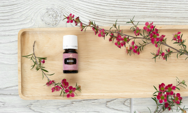 4 questions about Manuka essential oil you need answered ASAP