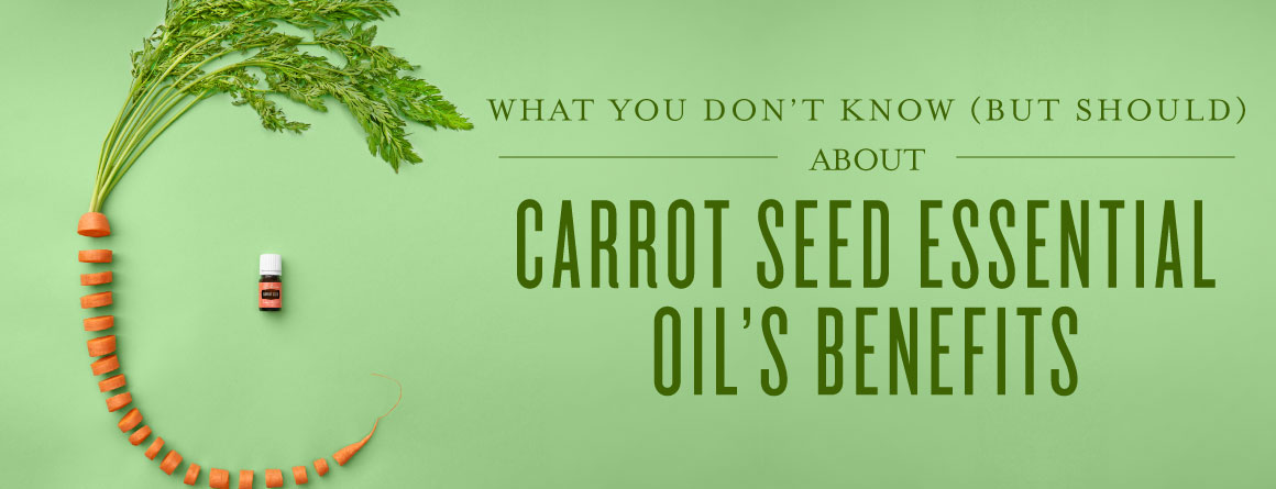 What you don't know (but should) about Carrot Seed essential oil's benefits