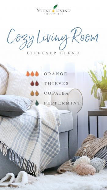 cozy living room diffuser blend