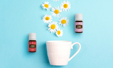 Keep calm: Fall in love with Roman and German Chamomile