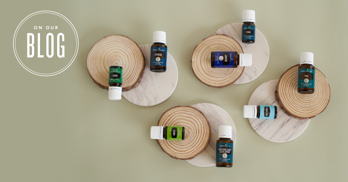 Using Woodsy Essential Oils Young Living Blog