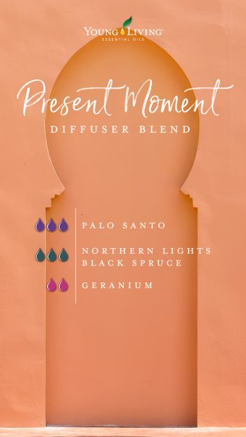 """Present moment"" diffuser blend recipe: 3 drops Palo Santo, 3 drops Northern lights black spruce, 2 drops geranium"