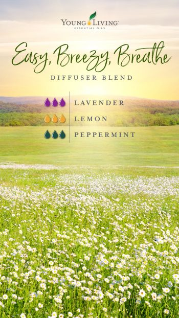 3 drops Lavender essential oil  3 drops Lemon essential oil  3 drops Peppermint essential oil