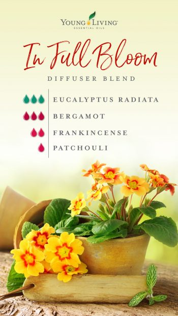 3 drops Eucalyptus Radiata essential oil  3 drops Bergamot essential oil  2 drops Frankincense essential oil  1 drop Patchouli essential oil