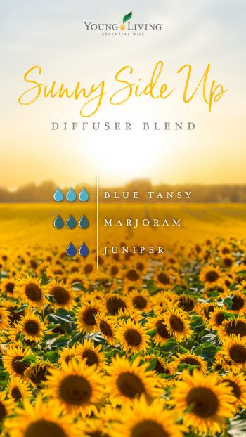 Sunny Side Up diffuser blend 3 drops Blue Tansy 3 drops Marjoram 2 drops Juniper