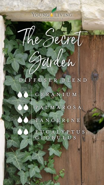 2 drops Geranium 2 drops Palmarosa 2 drops Tangerine 2 drops Eucalyptus Globulus