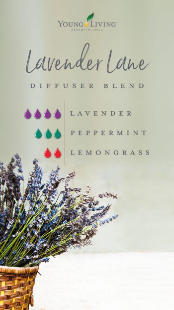 4 drops Lavender 3 drops Peppermint 2 drops Lemongrass