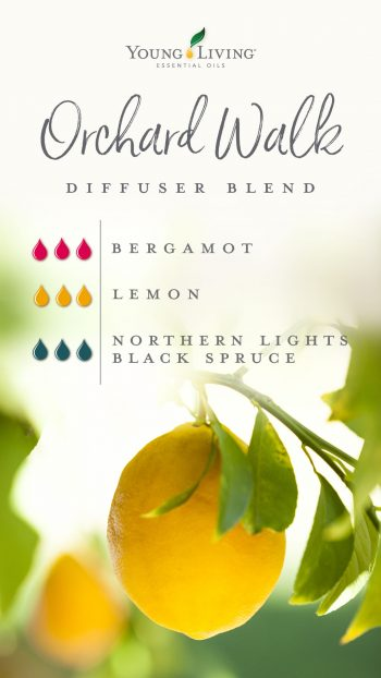 3 drops Bergamot 3 drops Lemon 3 drops Northern Lights Blue Spruce