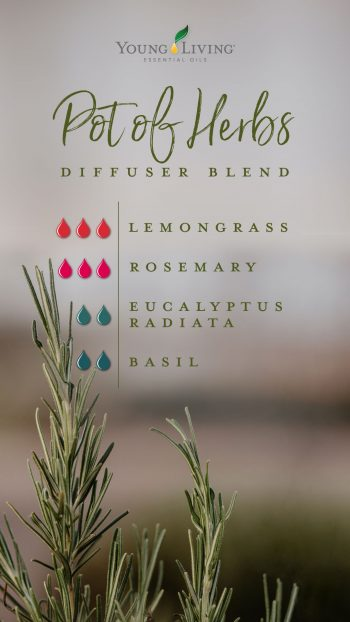 3 drops Lemongrass 3 drops Rosemary 2 drops Eucalyptus Radiata 2 drops Basil