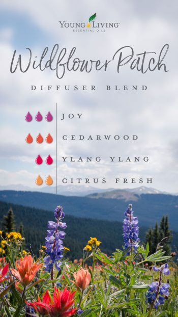 3 drops Joy 3 drops Cedarwood 2 drops Ylang Ylang 2 drops Citrus Fresh