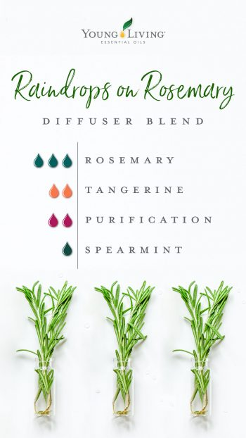3 drops rosemary, 2 drops tangerine, 2 purification, 1 drop spearmint