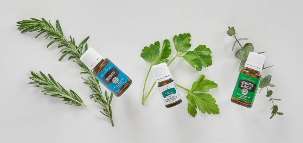 rosemary, parsley, and eucalyptus are some of the best spring essential oils