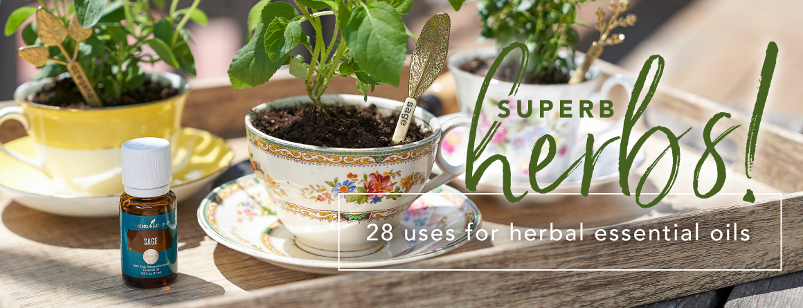 essential oil herb tags in teacups with botanicals