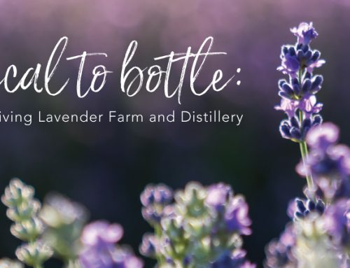 Botanical to bottle: Meet the Young Living Lavender Farm and Distillery