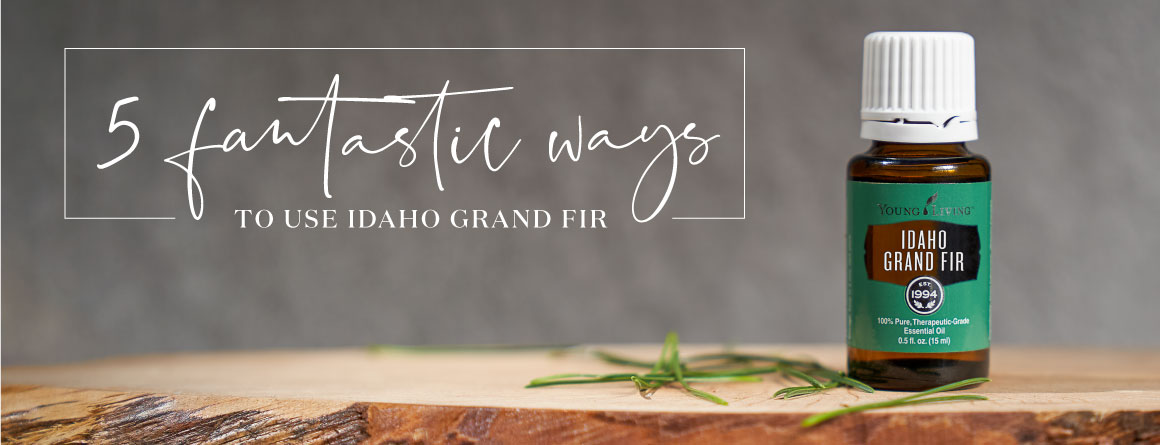 Idaho Grand Fir essential oil