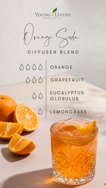 4 drops Orange 3 drops Grapefruit 2 drops Eucalyptus Globulus 1 drop Lemongrass