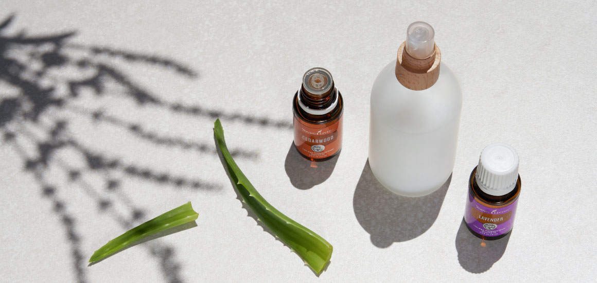 DIY leave in conditioner with aloe on countertop