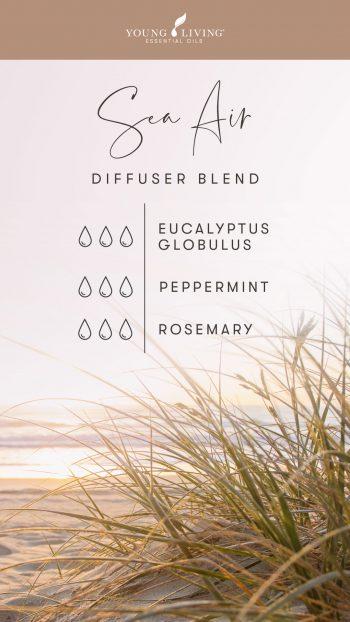 3 drops Eucalyptus Globulus 3 drops Peppermint 3 drops Rosemary