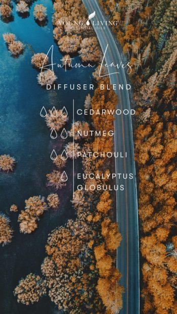 3 drops Cedarwood 2 drops Nutmeg 2 drops Patchouli 1 drop Eucalyptus Globulus