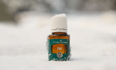 Feelin' pine! 6 uses for Pine essential oil
