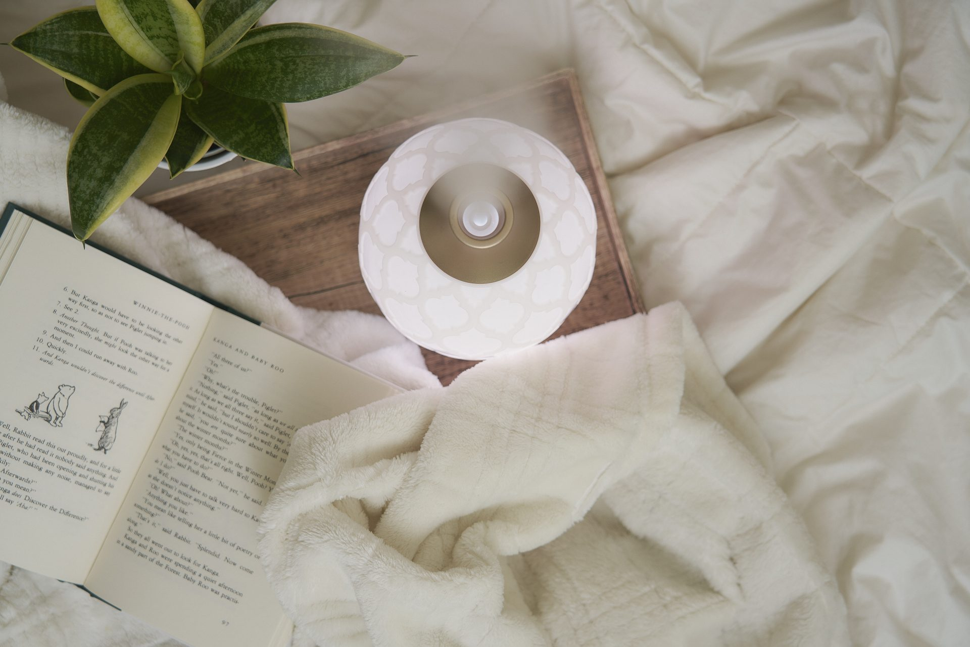 Young Living essential oil diffuser in a bedroom with a plant and book nearby