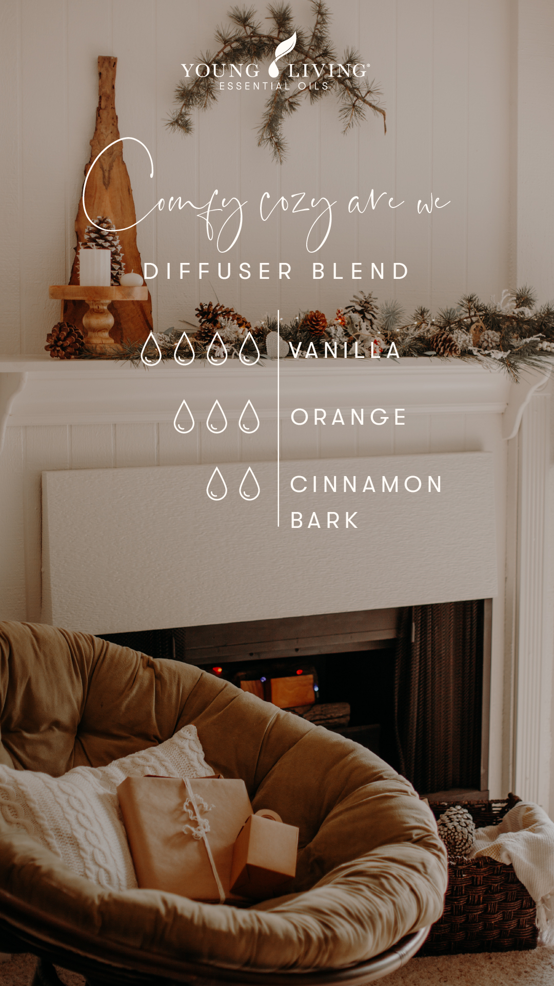 Young Living Holiday Diffuser Blend - comfy cozy are we