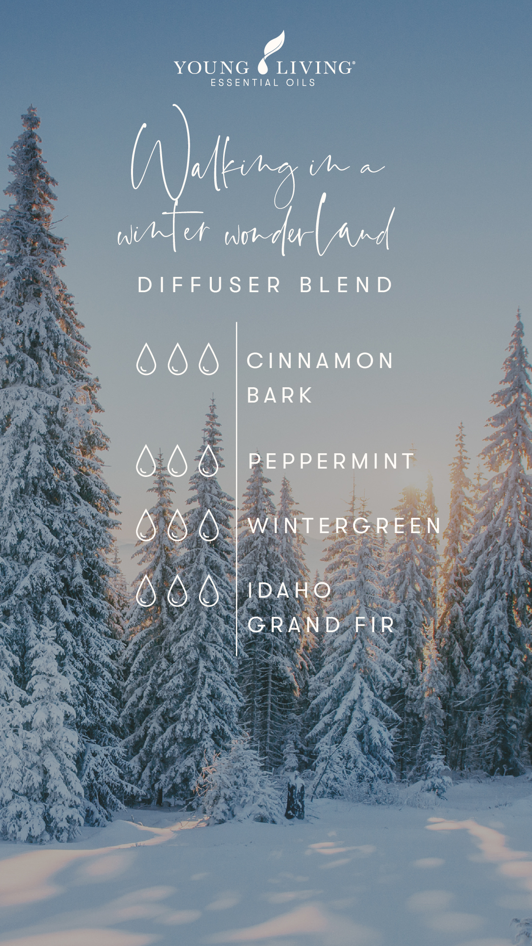 Young Living Essential Oil Blends - Walking in a winter wonderland