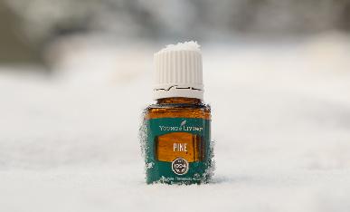 Enriquece tu día con la inspiración del bosque: 6 usos del aceite esencial de pino