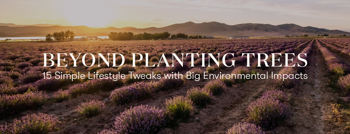 Earth day 2021 - Young Living Essential Oils Beyond Planting trees