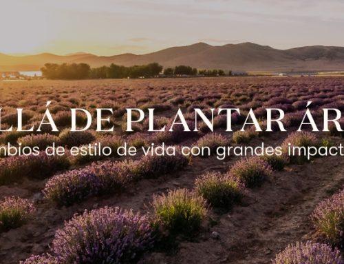 Día de la Tierra: más allá de plantar árboles